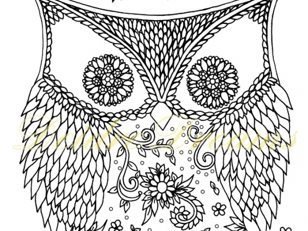 Ornamental owl colouring page with watermark